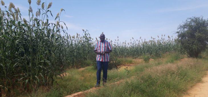 Activités réalisées à la ferme et au périmètre de Landao